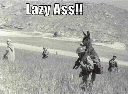 I'm A Lazy Ass!